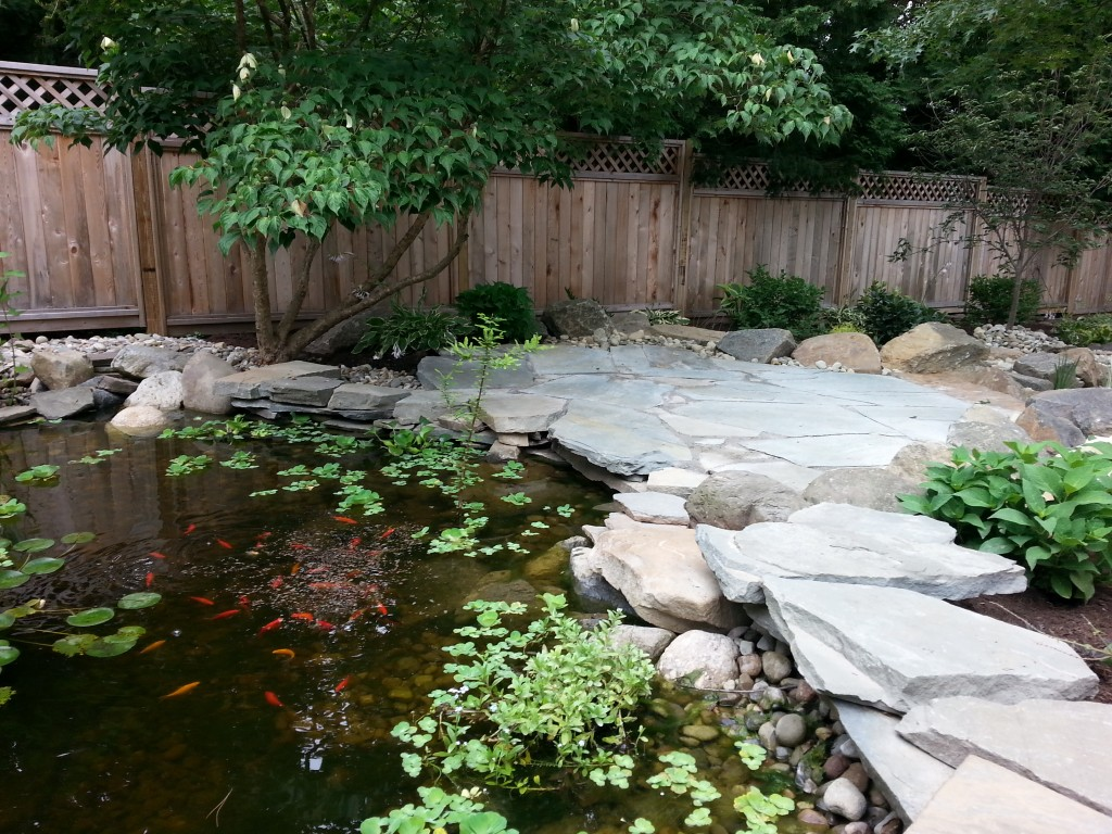 Water features and koi ponds sycamore landscaping inc for Balcony koi pond