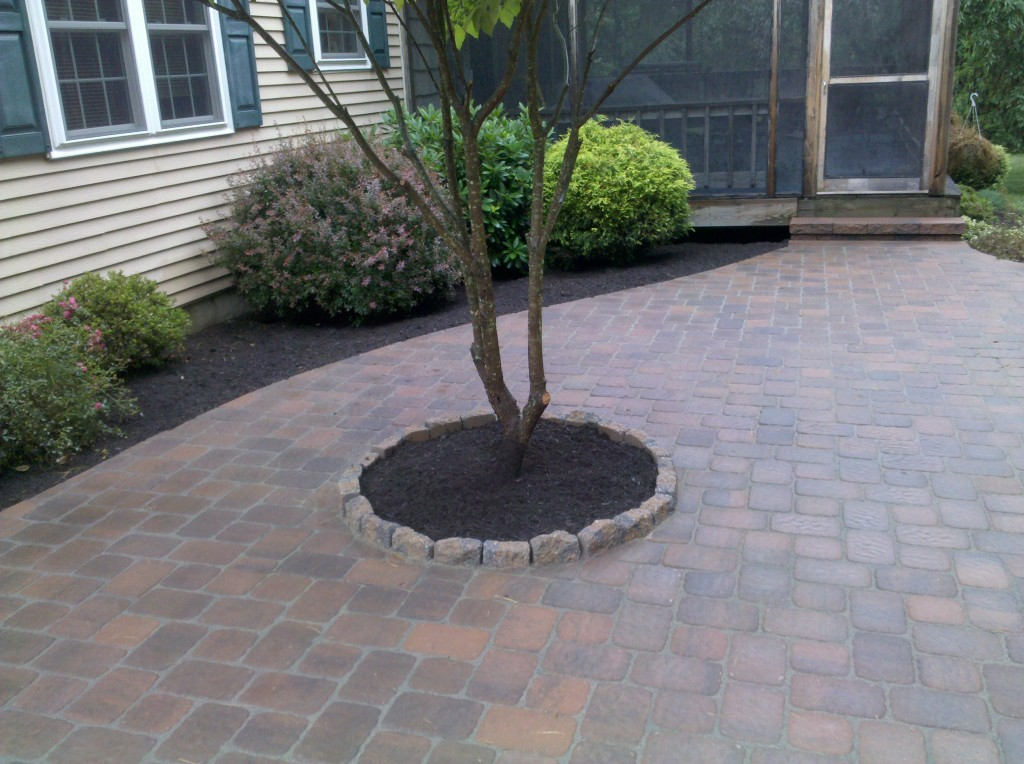Patio And Firepit Designs