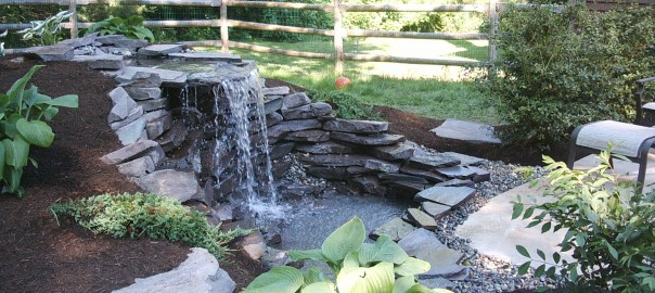 Water features and koi ponds sycamore landscaping inc for Natural pond maintenance